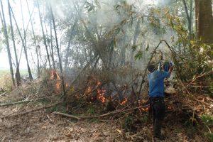 Incendio causado por el ESMAT en Corinto, en acciones de desalojo a liberadores de la madre tierra